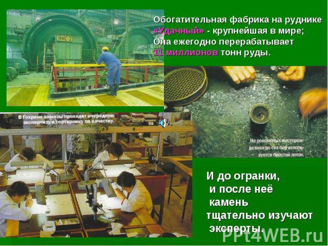Обогатительная фабрика на руднике «Удачный» - крупнейшая в мире; Она ежегодно перерабатывает 11 миллионов тонн руды.И до огранки, и после неё камень тщательно изучают эксперты.