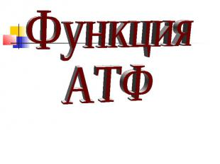 Функция АТФ