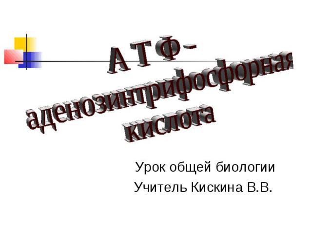 А Т Ф - аденозинтрифосфорная кислота Урок общей биологии Учитель Кискина В.В.