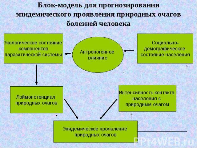 Блок-модель для прогнозирования эпидемического проявления природных очагов болезней человека