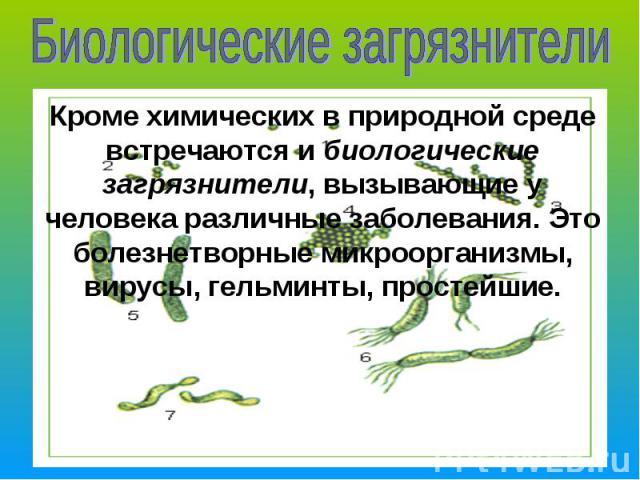 Биологические загрязнителиКроме химических в природной среде встречаются и биологические загрязнители, вызывающие у человека различные заболевания. Это болезнетворные микроорганизмы, вирусы, гельминты, простейшие.