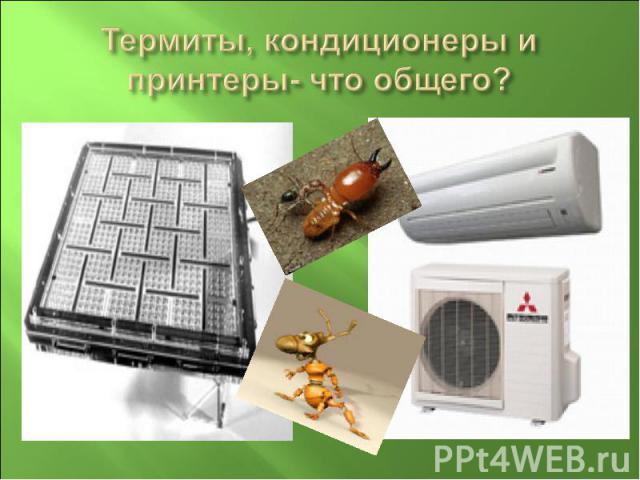 Термиты, кондиционеры и принтеры- что общего?