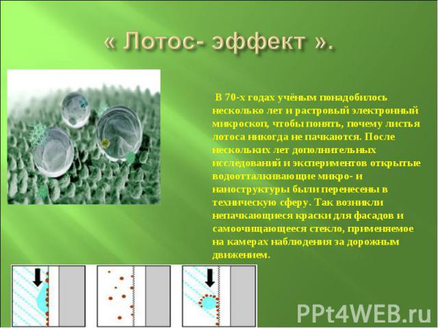 « Лотос- эффект ». В 70-х годах учёным понадобилось несколько лет и растровый электронный микроскоп, чтобы понять, почему листья лотоса никогда не пачкаются. После нескольких лет дополнительных исследований и экспериментов открытые водоотталкивающие…