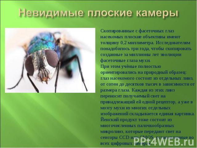 Невидимые плоские камерыСкопированные с фасеточных глаз насекомых плоские объективы имеют толщину 0,2 миллиметра. Исследователям понадобилось три года, чтобы скопировать созданные за миллионы лет эволюции фасеточные глаза мухи.При этом учёные полнос…