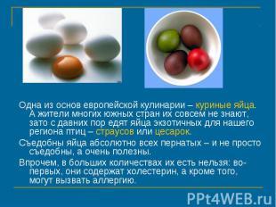 Одна из основ европейской кулинарии – куриные яйца. А жители многих южных стран