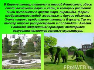 В Европе топиар появился в период Ренессанса, здесь стали возникать парки и сады