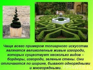 Чаще всего примером топиарного искусства являются великолепные живые изгороди, к