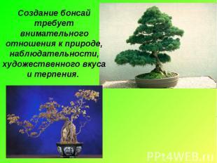 Создание бонсай требует внимательного отношения к природе, наблюдательности, худ