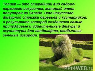 Топиар — это старейший вид садово-паркового искусства, который очень популярен н