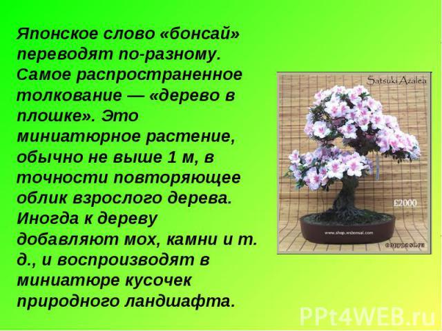 Японское слово «бонсай» переводят по-разному. Самое распространенное толкование — «дерево в плошке». Это миниатюрное растение, обычно не выше 1 м, в точности повторяющее облик взрослого дерева. Иногда к дереву добавляют мох, камни и т. д., и воспрои…