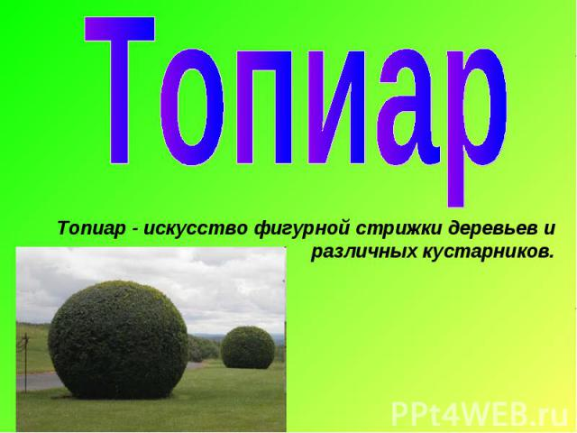 ТопиарТопиар - искусство фигурной стрижки деревьев и различных кустарников.