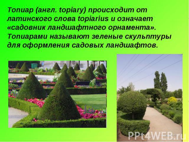 Топиар (англ. topiary) происходит от латинского слова topiarius и означает «садовник ландшафтного орнамента». Топиарами называют зеленые скульптуры для оформления садовых ландшафтов.