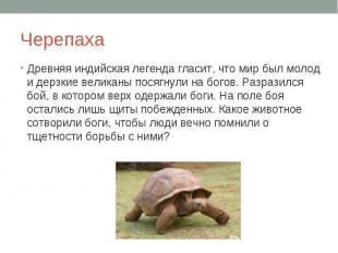 Черепаха Древняя индийская легенда гласит, что мир был молод и дерзкие великаны