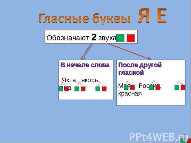 Гласные буквы Я ЕОбозначают 2 звука В начале слова Яхта, якорь, ямаПосле другой гласнойМаяк, Россия, красная