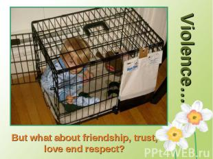Violence…But what about friendship, trust, love end respect?