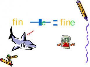 fin fine