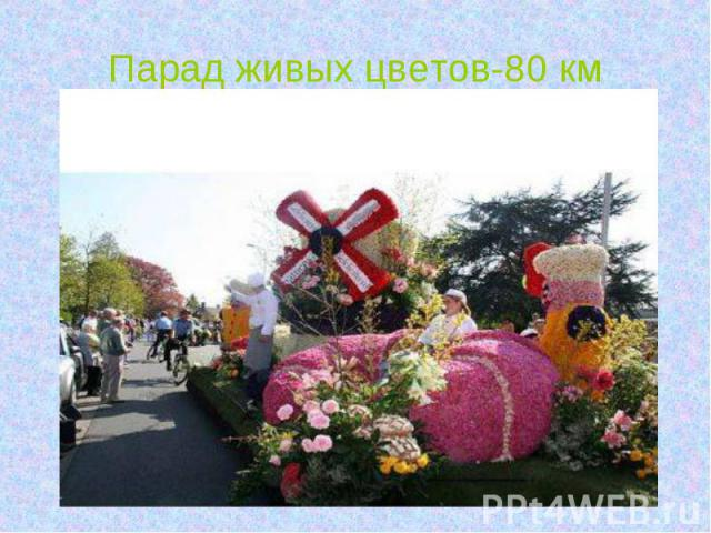 Парад живых цветов-80 км