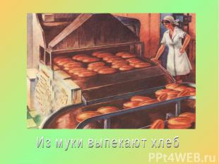 Из муки выпекают хлеб