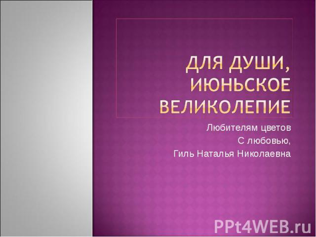 Для души, июньское великолепие Любителям цветов С любовью, Гиль Наталья Николаевна