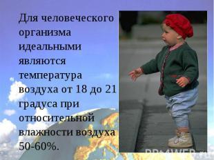 Для человеческого организма идеальными являются температура воздуха от 18 до 21