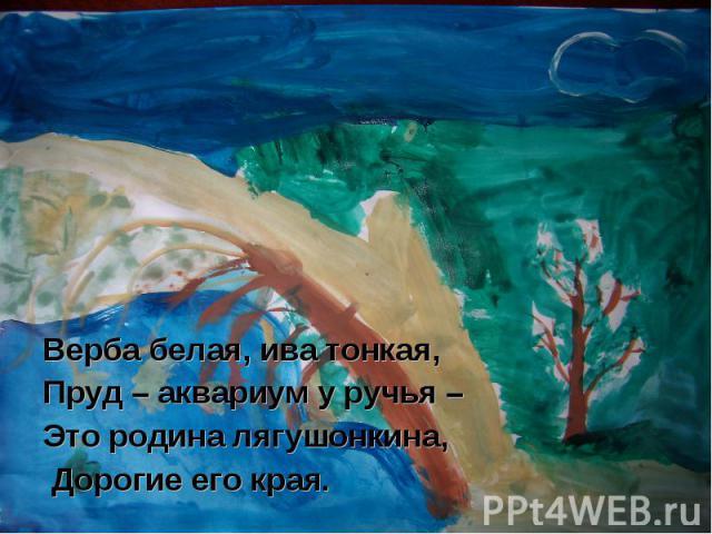 Верба белая, ива тонкая,Пруд – аквариум у ручья – Это родина лягушонкина, Дорогие его края.