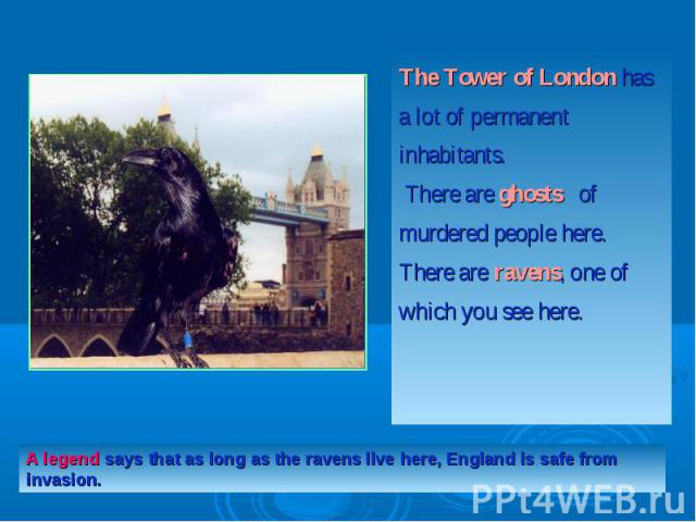 The Tower of London has a lot of permanent inhabitants. There are ghosts  of murdered people here. There are ravens, one of which you see here.A legend says that as long as the ravens live here, England is safe from invasion.