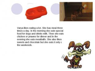 Varya likes eating a lot. She has meal three times a day. In the morning she eat