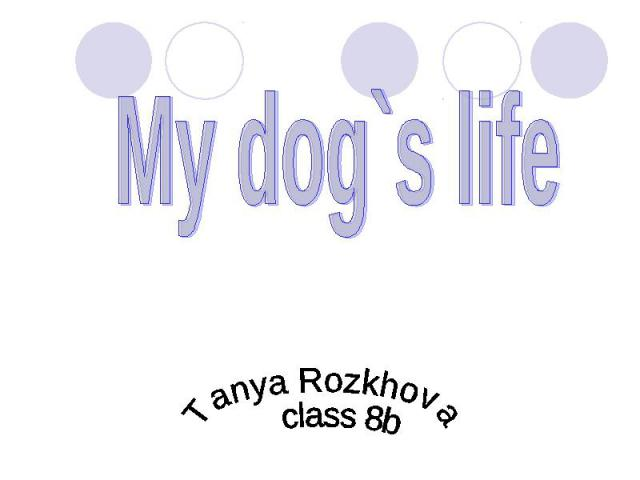 My dog`s life Tanya Rozkhova class 8b
