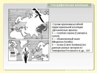 Географическая изоляция Случаи крупномасштабной территориальной изоляции Дизъюнк