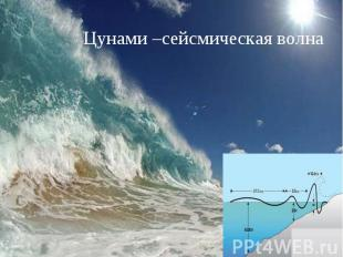 Цунами –сейсмическая волна