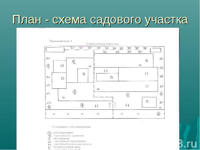 План - схема садового участка
