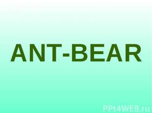 ANT-BEAR