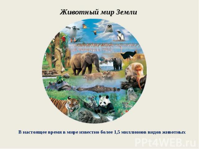 Животный мир ЗемлиВ настоящее время в мире известно более 1,5 миллионов видов животных