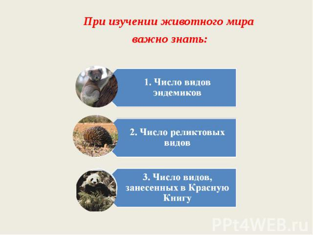 При изучении животного мира важно знать:1. Число видов эндемиков2. Число реликтовых видов3. Число видов, занесенных в Красную Книгу