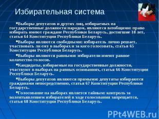 Избирательная системаВыборы депутатов и других лиц, избираемых на государственны