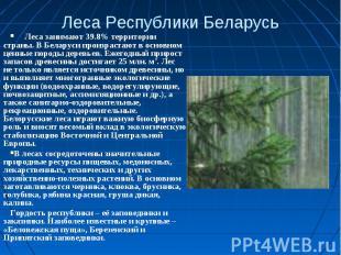Леса Республики Беларусь Леса занимают 39.8% территории страны. В Беларуси произ