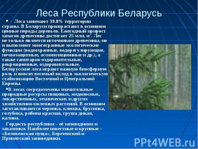 Леса Республики Беларусь Леса занимают 39.8% территории страны. В Беларуси произрастают в основном ценные породы деревьев. Ежегодный прирост запасов древесины достигает 25 млн. м'. Лес не только является источником древесины, но и выполняет многогра…