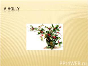 A holly