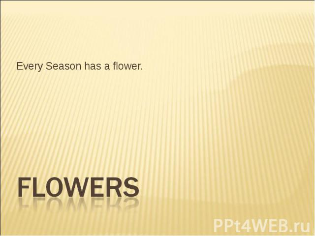 Every Season has a flower. Flowers