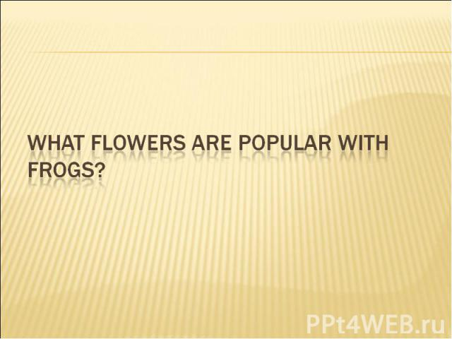 What flowers are popular with frogs?
