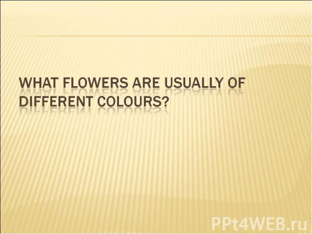 What flowers are usually of different colours?