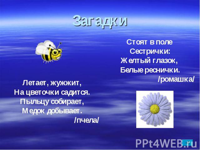 ЗагадкиЛетает, жужжит,На цветочки садится.Пыльцу собирает,Медок добывает. /пчела/Стоят в поле Сестрички:Желтый глазок, Белые реснички. /ромашка/