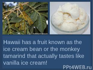 Hawaii has a fruit known as the ice cream bean or the monkey tamarind that actua