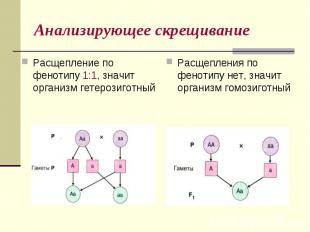 Анализирующее скрещиваниеРасщепление по фенотипу 1:1, значит организм гетерозиго