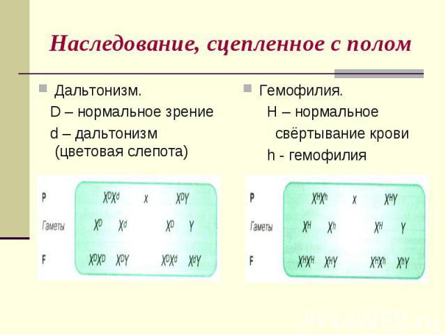 Наследование, сцепленное с поломДальтонизм. D – нормальное зрение d – дальтонизм (цветовая слепота) Гемофилия. H – нормальное свёртывание крови h - гемофилия