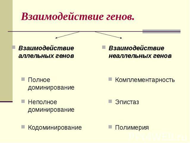 Взаимодействие генов.Взаимодействие аллельных геновВзаимодействие неаллельных генов