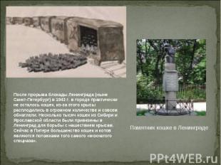После прорыва блокады Ленинграда (ныне Санкт-Петербург) в 1943 г. в городе практ