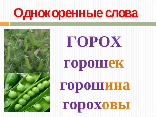 Однокоренные словаГОРОХгорошекгорошинагороховый