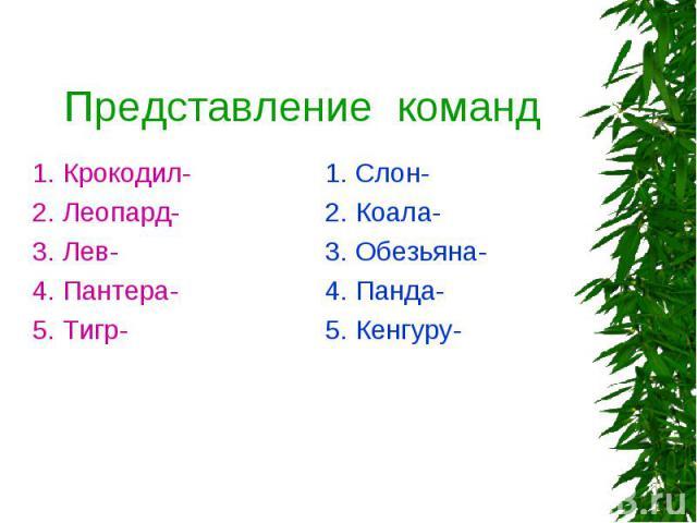 Представление команд 1. Крокодил- 2. Леопард- 3. Лев- 4. Пантера- 5. Тигр- 1. Слон- 2. Коала- 3. Обезьяна- 4. Панда- 5. Кенгуру-