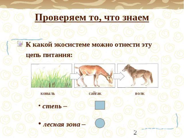Проверяем то, что знаем К какой экосистеме можно отнести эту цепь питания: ковыль сайгак волк степь – лесная зона –